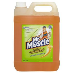 Mr Muscle Floor Cleaner